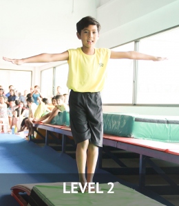 level2_gym-260x300 Kids Gymnastics